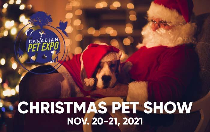 Christmas Pet Show