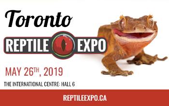 Toronto Reptile Expo